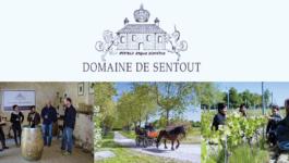 Portes Ouvertes au Domaine de Sentout
