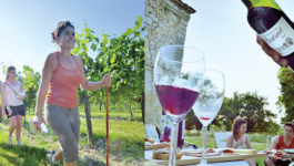 Hiking and tapas tasting at Château Boutinet