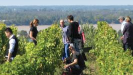 Harvest Rendez-Vous at the Château de l'Hurbe