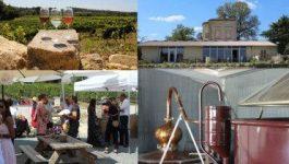 Mercredi, c'est distillerie – Cave Lartigue